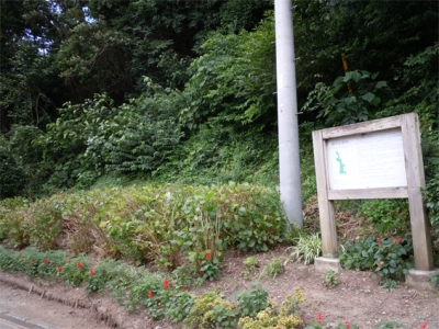 猪子山緑地