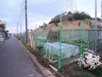 日野南菜園