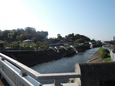 中島橋のこいのぼり