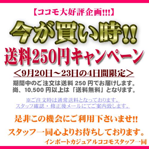 シルバーウィーク限定送料250円キャンペーン