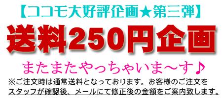 送料250円キャンペーン
