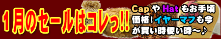 SALE201001