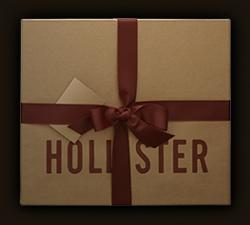 HOLLISTER/ ホリスター