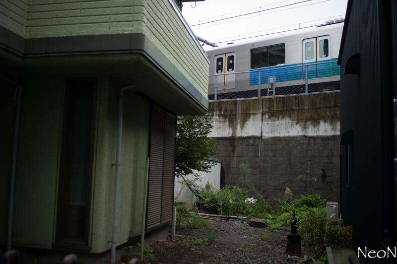 L1027194.jpg