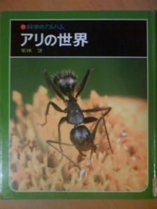 アリの世界