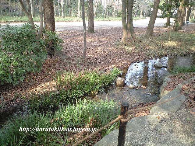 瀬見の小川