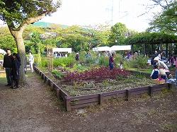 ニッケコルトンプラザ内のお庭