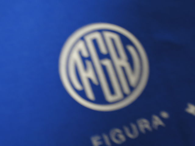 FIGURA Tシャツ FIG-T010 青 バック拡大 2.jpg