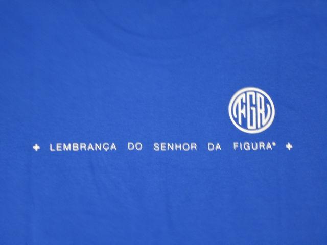 FIGURA Tシャツ FIG-T010 青 バック拡大.jpg