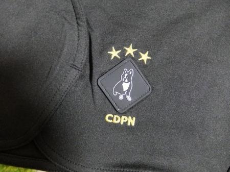 CP19010-2.jpg