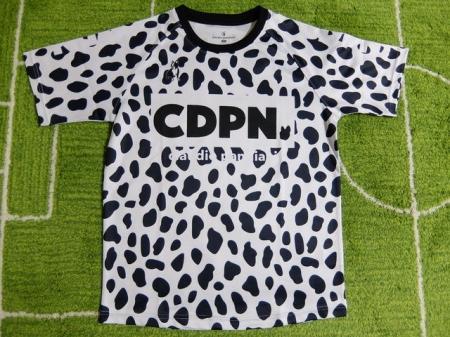 CP20018-11.jpg
