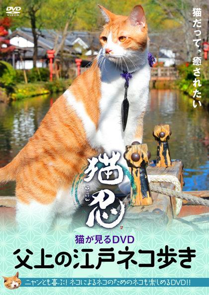 父上の江戸ネコ歩き