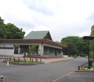 お外ヨガ 北の丸公園5