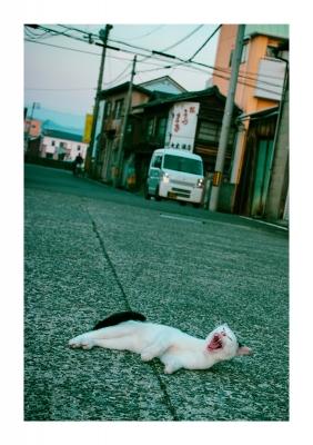 S-040_5_2_ueno.jpg