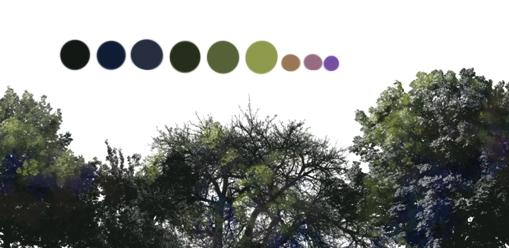 ki-color