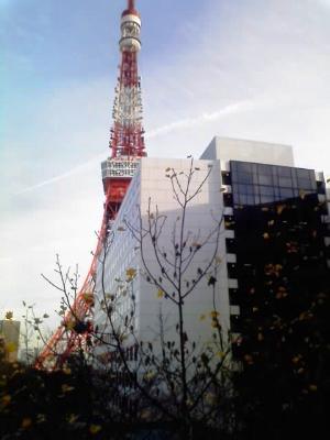 晩秋の東京タワー
