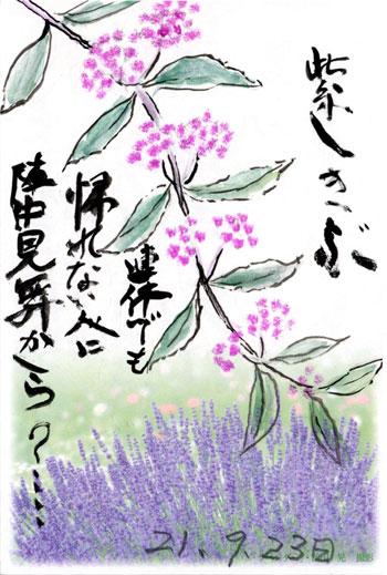 母の絵手紙_紫式部