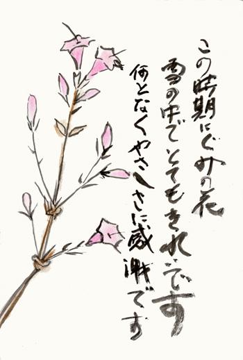 グミの花 母からの絵手紙