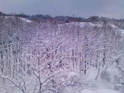 柏崎より豪雪の写メ 米山山麓