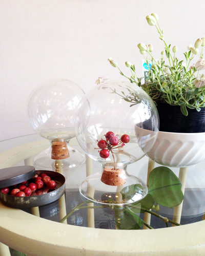 シーズキャニスター、ガラスドーム、保存瓶、ガラスジャー