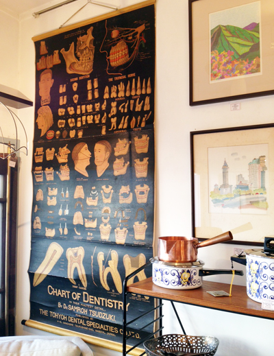 アナトミーチャート、解剖図、歯科、アンティーク、戦前、アートポスター、anatomychart