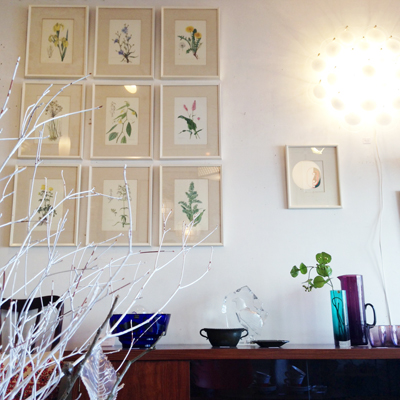 ボタニカルアート、植物図鑑、ウォールデコレーション、ヴィンテージ、インテリア、ウォールデコール