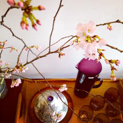 ナンセンス下北沢、店内、ディスプレイ、桜、フラワーアレンジ、花見