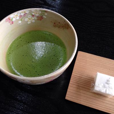 三渓園、苔、桜、日本庭園、2016春、池、抹茶