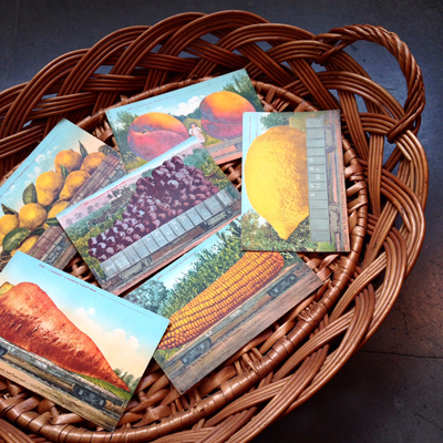ヴィンテージ、アンティーク、ポストカード、絵はがき、アメリカ、フルーツ、EdwardHMitchell