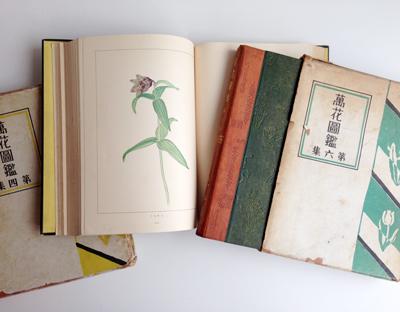 辻永、萬花図鑑、1930、平凡社、植物図鑑、水彩、植物画集