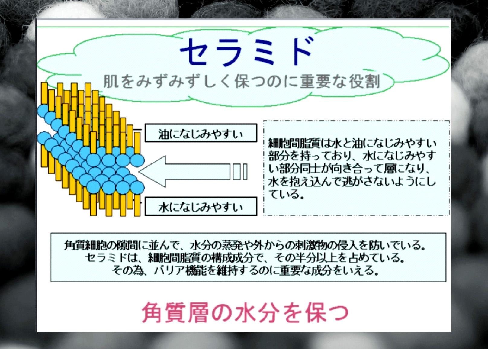 お肌4.jpg