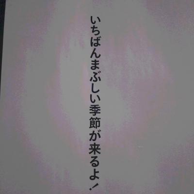 DSC_5401.JPG