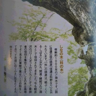 DSC_6536.JPG