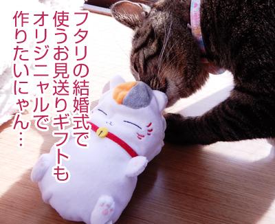 【ラッピングの森】重大発表!