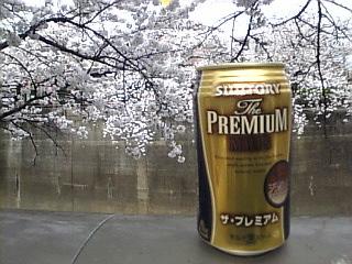 20070401_石神井川沿い花見6