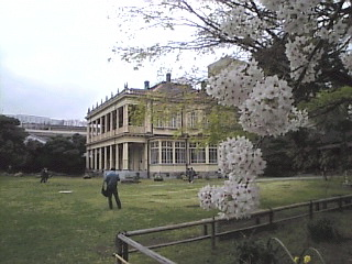 旧岩崎邸庭園「庭園からの眺め2」