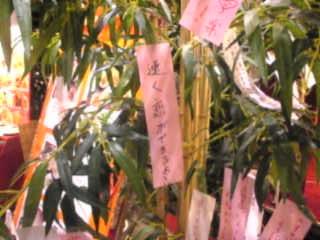 香港麺 新記「店頭 七夕飾り」