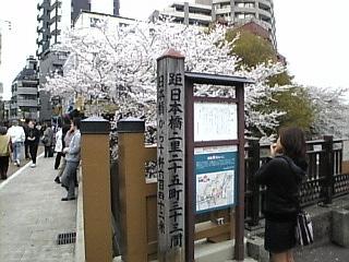 板橋_石神井川_花見2008_E
