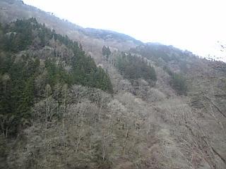 秩父_不動滝「景色2」
