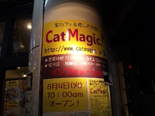 CAT MAGIC「看板」