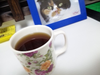 CAT MAGIC「お茶」