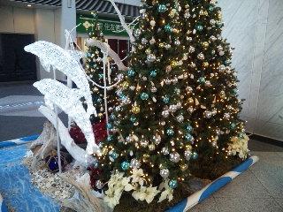 信州そば処 そじ坊「クリスマスイルミネーション」