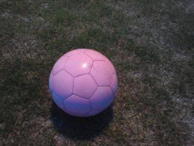 見つかったボール