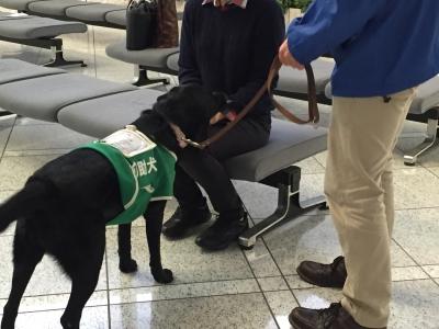 千葉県庁デモ(介助犬体験)