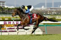 前哨戦の阪神大賞典を重たい馬場、強風の悪条件のなかあっさりと楽勝したディープインパクト