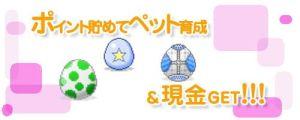 ケータイポイントZ 懸賞サイト