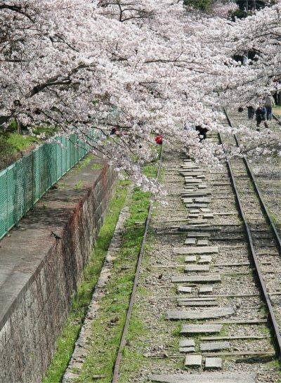 琵琶湖と京都を結ぶ琵琶湖疏水の開通にあわせて整備された傾斜鉄道。蹴上と疏水の第3トンネル西の船溜り間の傾斜が急のため線路を整備し、台車に舟を乗せて上下させるようにしたもの。水運の消滅に伴い廃止され、現在はその一部の設備が保存されています。桜の名所としても知られ、春には多くの人が訪れる人気エリアのひとつです。