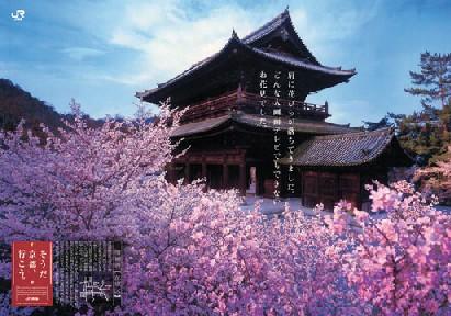 そうだ!京都へ行こう JR東海のCM画像