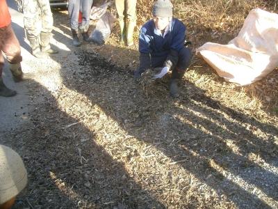 炭と腐葉土