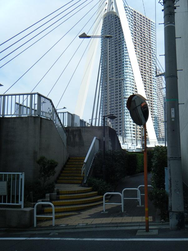 キャリーミーin東京